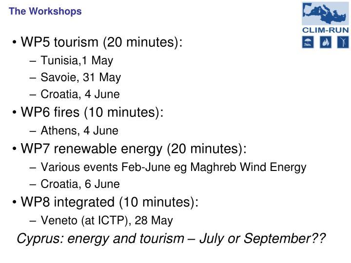 WP5 tourism (20 minutes):