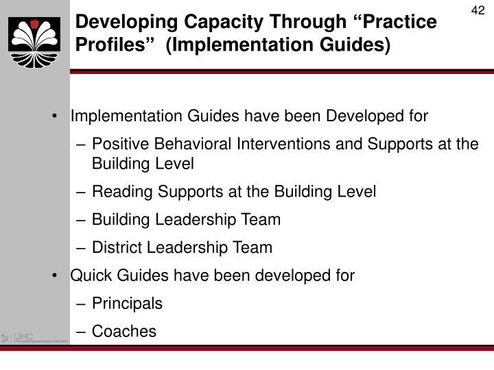 Developing Capacity Through