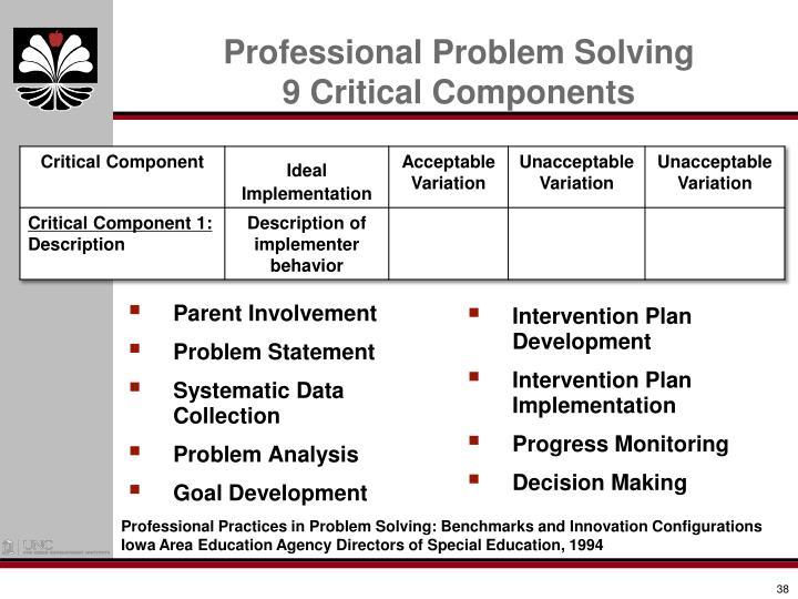 Professional Problem Solving