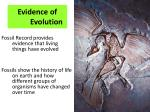 evidence of evolution1