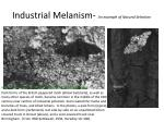 industrial melanism an example of natural selection