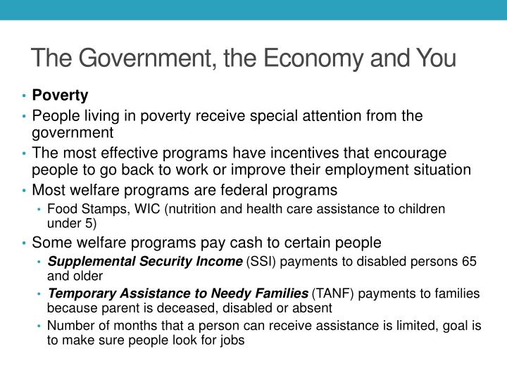 The Government, the Economy and You