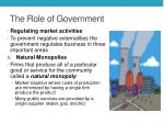 the role of government2