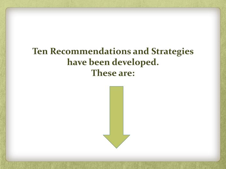 Ten Recommendations and Strategies have been developed.