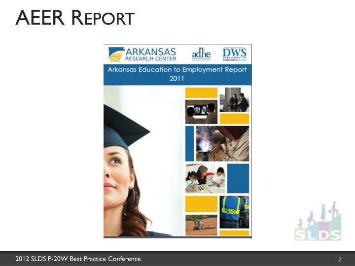 AEER Report