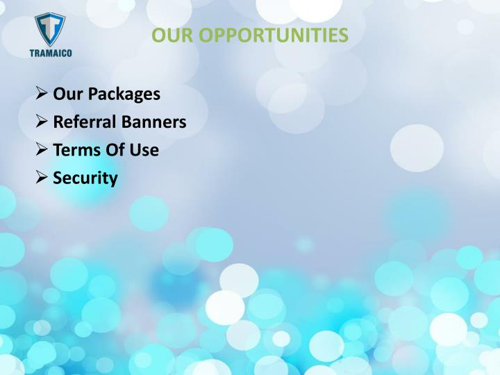 OUR OPPORTUNITIES