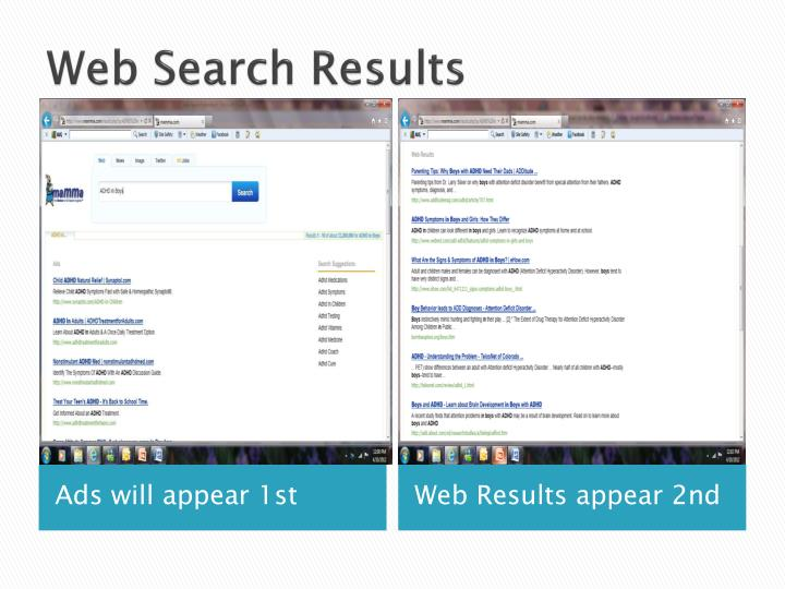 Web Search Results
