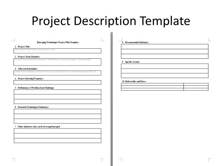 Project Description Template