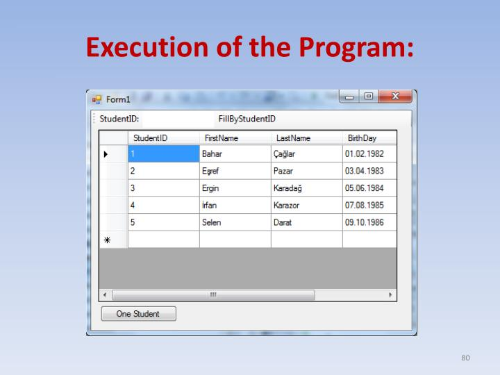 Execution of the Program: