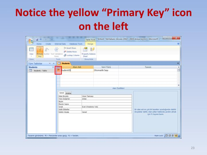 "Notice the yellow ""Primary Key"" icon on the left"
