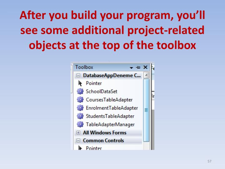 After you build your program, you'll see some additional project-related objects at the top of the toolbox