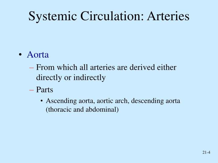 Systemic Circulation: Arteries