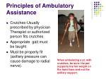 principles of ambulatory assistance