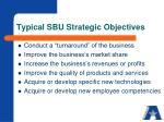 typical sbu strategic objectives
