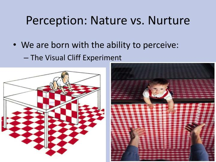 Perception nature vs nurture1
