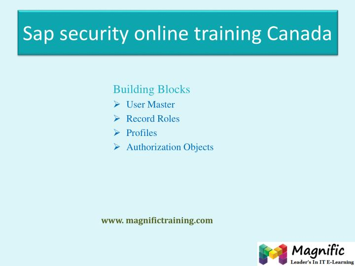 Sap security online training Canada