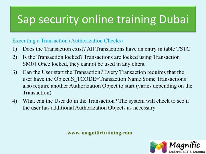 Sap security online training Dubai
