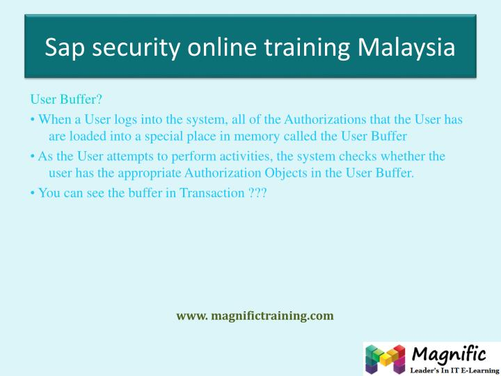 Sap security online training Malaysia