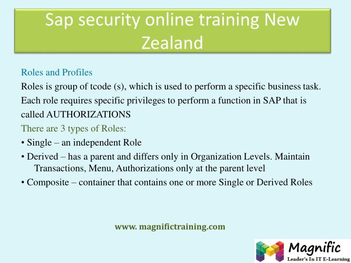 Sap security online training New Zealand