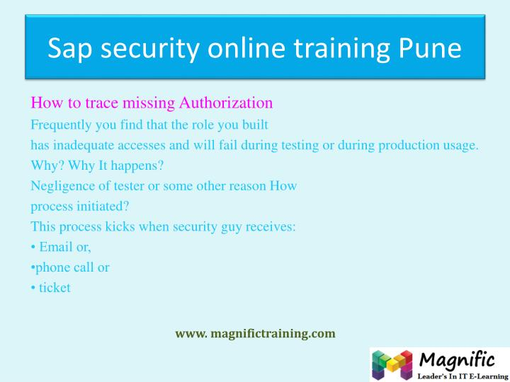 Sap security online training Pune