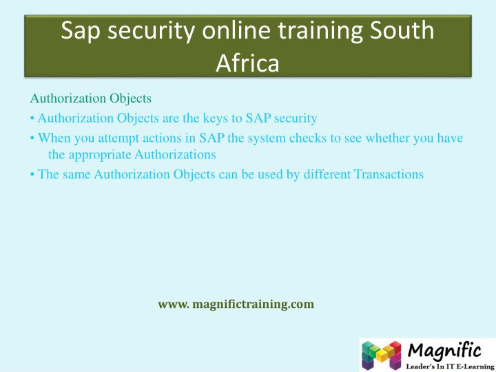 Sap security online training South Africa
