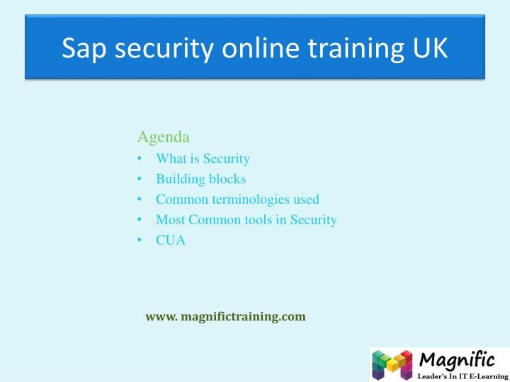 Sap security online training uk