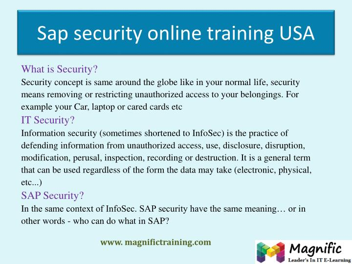 Sap security online training usa