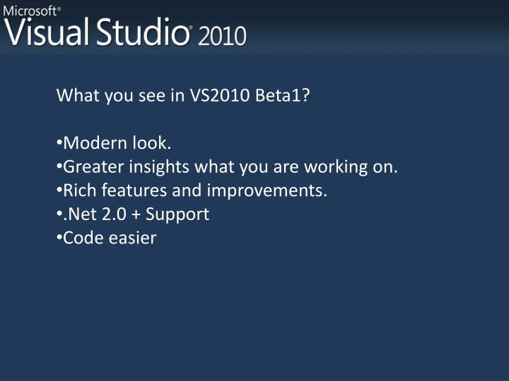 What you see in VS2010