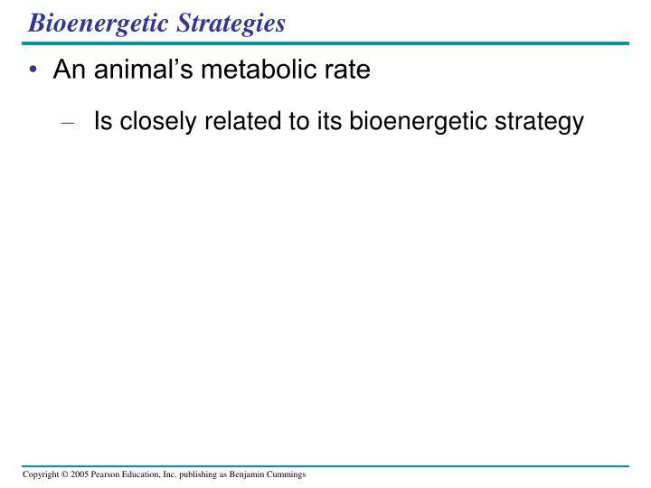 Bioenergetic Strategies