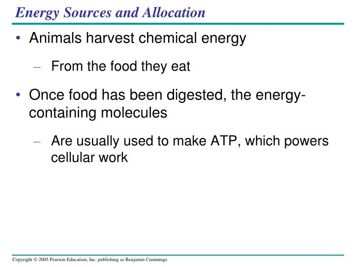 Energy Sources and Allocation