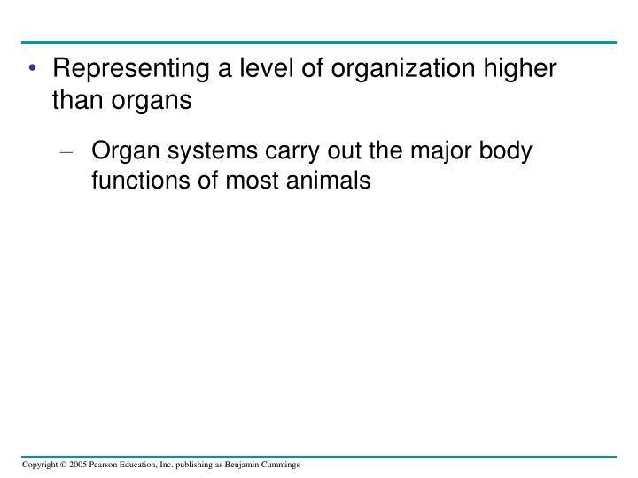 Representing a level of organization higher than organs