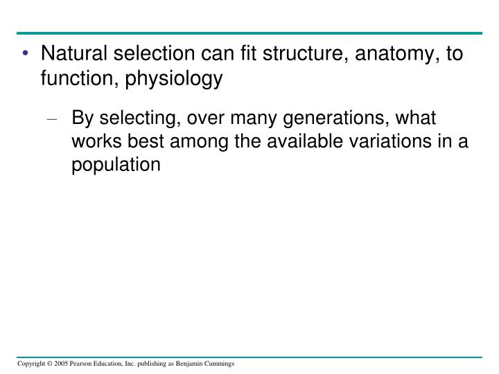Natural selection can fit structure, anatomy, to function, physiology