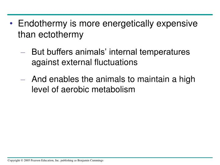 Endothermy is more energetically expensive than ectothermy