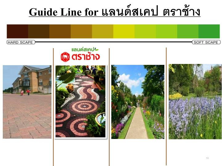 Guide Line for