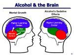 alcohol the brain