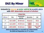 dui by minor