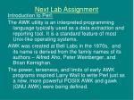 next lab assignment1