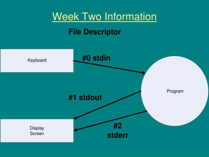 Week Two Information