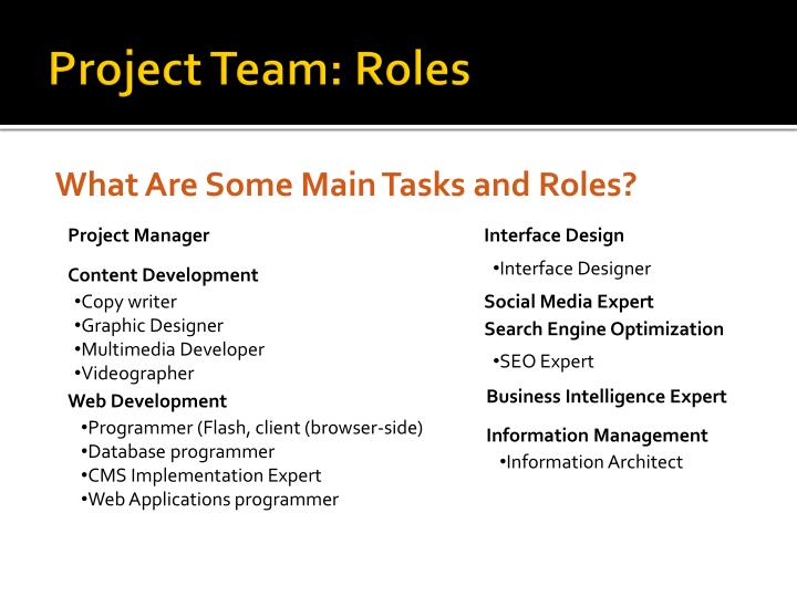 Project Team: Roles
