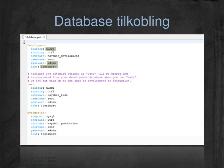 Database tilkobling