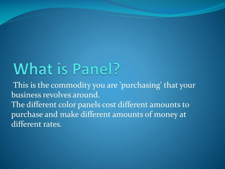 What is panel