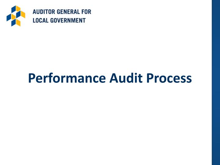 Performance Audit Process