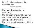 sec 17 1 promotion and the promotion mix