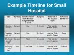 example timeline for small hospital