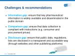 challenges recommendations2