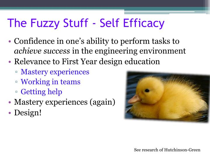 The Fuzzy Stuff - Self Efficacy