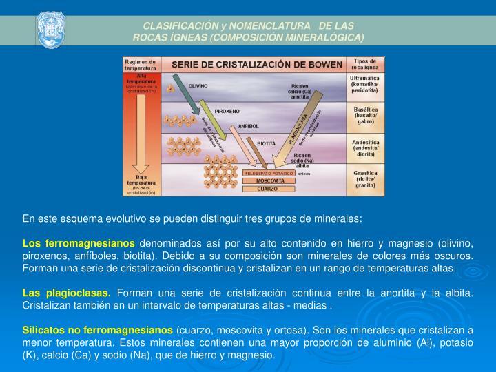 CLASIFICACIÓN y NOMENCLATURA  DE LAS