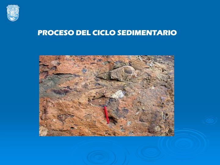 PROCESO DEL CICLO SEDIMENTARIO