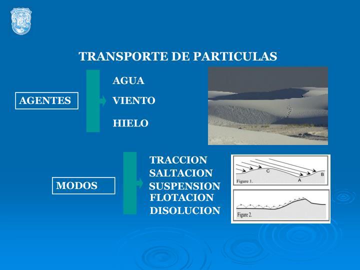 TRANSPORTE DE PARTICULAS