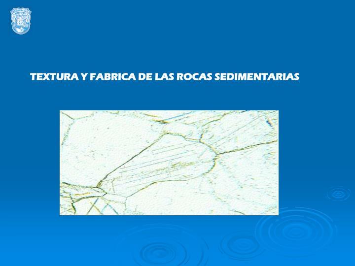 TEXTURA Y FABRICA DE LAS ROCAS SEDIMENTARIAS